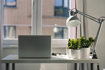 A laptop sitting on a well-lit desk with a lamp next to a few pot plants